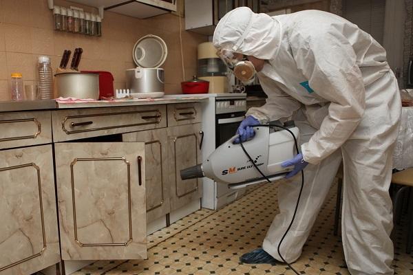 Процесс санобработки от клопов в домашних условиях своими силами
