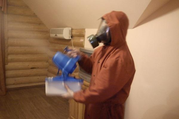 Применение средства Аверфос против клопов в домашних условиях