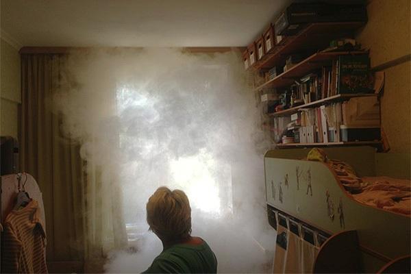 Использование дымой шашки от клопов в квартире